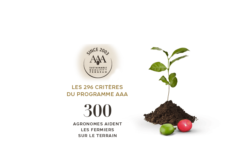the AAA™ program's 296 sustainability criteria